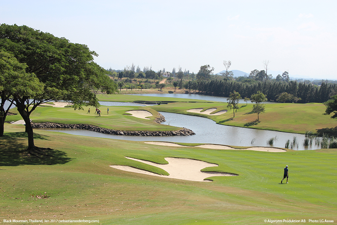 course-view-blog